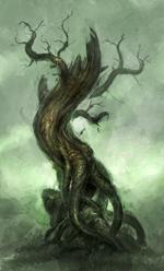 albero secco